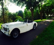 restauration_austin_healey_8